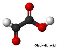 Glioxilsav